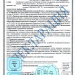 Декларация П-166М 1